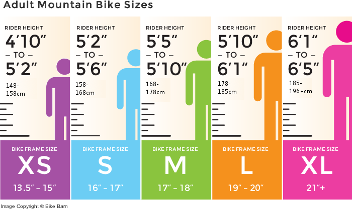 Mountain Bike Size